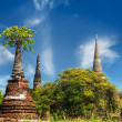 Asian religious architecture. Ancient ruins with growing trees u — Stock Photo #53813843