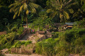 Small asian village with traditional wooden house in jungles. Laos — Stock Photo