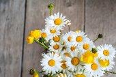 Vackra anbud bukett blommor sommar äng — Stockfoto
