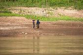 Venkovské ženy, výsadba na zemědělské půdy po březích řeky mekong. laos — Stock fotografie