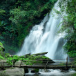 Tropical rain forest landscape with Pha Dok Xu waterfall and bamboo bridge. Thailand — Stock Photo #54501505
