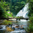 Tropical rain forest landscape with Pha Dok Xu waterfall and bamboo bridge. Thailand — Stock Photo #54501509