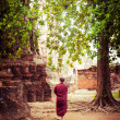 Buddhist monk at ancient ruins of Wat Mahathat — Stock Photo #54501647