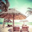 Beach with palm trees, chairs and umbrella — Stock Photo #54502049
