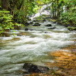 Tropical rainforest landscape with flowing river, rocks and jung — Stock Photo #54502235