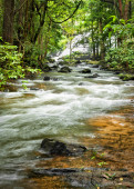 Tropical rainforest landscape with flowing river, rocks and jung — Stock Photo