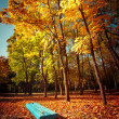 Sunny day in outdoor park with colorful autumn trees and bench — Stock Photo #54828807
