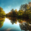 Sunny day in outdoor park with autumn trees reflection — Stock Photo #54828821