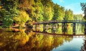 Autumn in outdoor park with wooden bridge on lake — Stock Photo