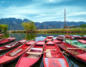 Vietnamese boats at river. — Stock Photo