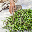 Organic yard long beans — Stock Photo #59138959