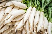 Daikon radish vegetables — Stockfoto