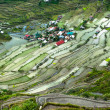 Village houses near rice terraces fields. Amazing abstract texture with sky colorful reflection in water. Ifugao province. Banaue, Philippines UNESCO heritage — Stock Photo #72675755