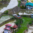 Village houses near rice terraces fields. Amazing abstract textu — Stock Photo #72675819