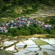 Village houses near rice terraces fields. Amazing abstract textu — Stock Photo #76926563