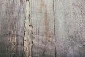 Tagliare sfondo albero — Foto Stock