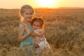 Two child girls at the sunset field — Stock Photo