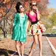 Two girls in colorful dresses walking in the autumn park — Stock Photo #53980635