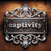 Captivity vector metal word on wood — Stock Vector