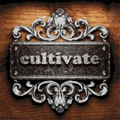 Cultivate vector metal word on wood — Wektor stockowy