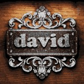 David vector metal word on wood — Stock Vector