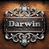 Darwin vector metal word on wood — Stock Vector
