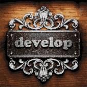 Develop vector metal word on wood — Stock Vector