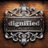 Dignified vector metal word on wood — Stock Vector