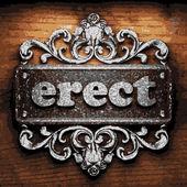 Erect vector metal word on wood — Wektor stockowy