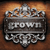 Grown vector metal word on wood — Stock vektor