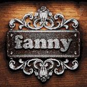 Fanny vector metal word on wood — Stock Vector