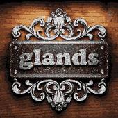 Glands vector metal word on wood — Stock Vector