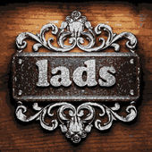 Lads vector metal word on wood — Stock Vector