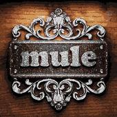 Mule vector metal word on wood — Stock Vector