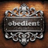 Obedient vector metal word on wood — Vetor de Stock