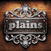 Plains vector metal word on wood — Stock Vector