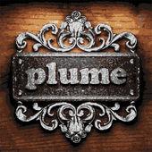 Plume vector metal word on wood — Stock Vector