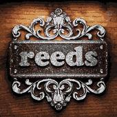 Reeds vector metal word on wood — Stock Vector