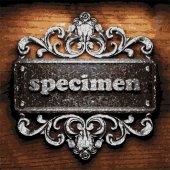 Specimen vector metal word on wood — Stock Vector