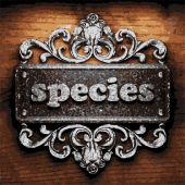 Species vector metal word on wood — Stock Vector