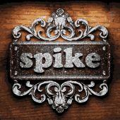 Spike vector metal word on wood — Stock Vector