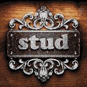 Stud vector metal word on wood — Stock Vector