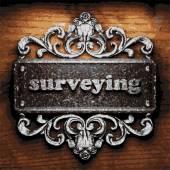 Surveying vector metal word on wood — Stock Vector
