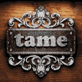 Tame vector metal word on wood — Stock Vector