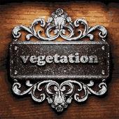 Vegetation vector metal word on wood — Stock Vector