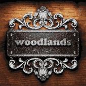 Woodlands vector metal word on wood — Stock Vector