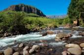 Mountain river — Stockfoto