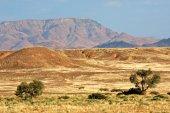 Namib desert landscape — Stock Photo