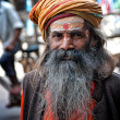 DELHI, INDIA - MARCH 28, 2012: Portrait of undefined sadhu man with big beard and turban — Stock Photo #73328009