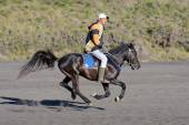 MOUNT BROMO, JAVA INDONESIA - JUNE 28, 2014: Undefined horse rider transferring tourists around volcano. — Stock Photo